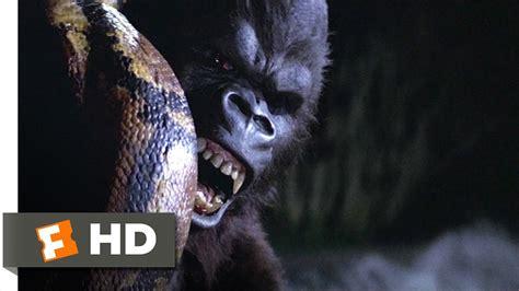 Film Anaconda Vs Kingkong   king kong 5 9 movie clip snake vs kong 1976 hd