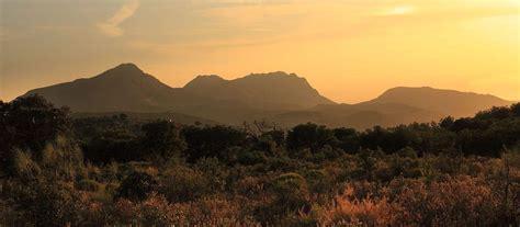 ver imagenes insolitas naturaleza naturaleza y paisajes es verde