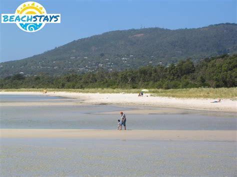 catamaran hire rosebud rosebud beach stays beach and coast accommodation