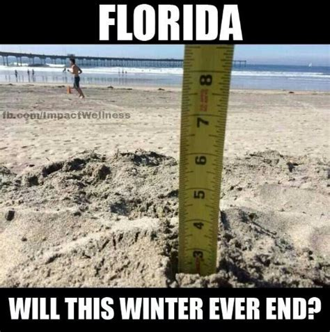Florida Winter Meme - 301 moved permanently