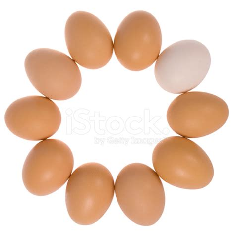 ten eggs in one egg stock photos freeimages.com