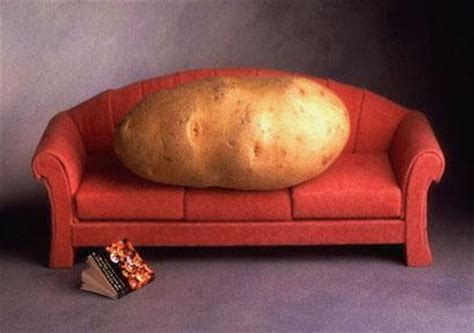 lazy couch potato are you a couch potato