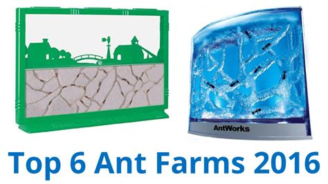 best ant farm 6 best ant farms 2016