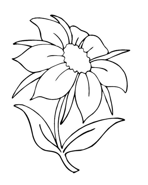 coloring pages of flowers printable printable flowers coloring pages coloring me