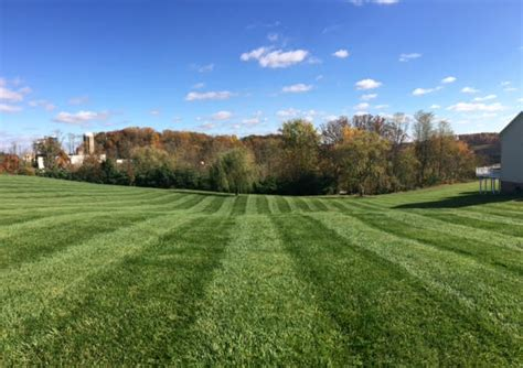 4 seasons landscaping lawn maintenance 4 seasons landscaping services llc
