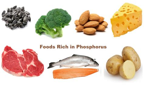low phosphorus food foods high in phosphorus recipes food