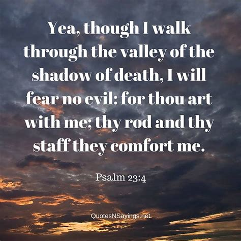 bible verses about peace and comfort scriptures for comfort in death dogs cuteness daily