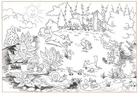 deciduous forest coloring sheets kids coloring deciduous