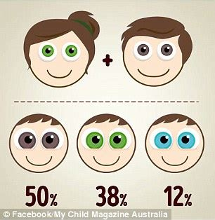 when do babies get their eye color the eye colour combinations your baby could based on