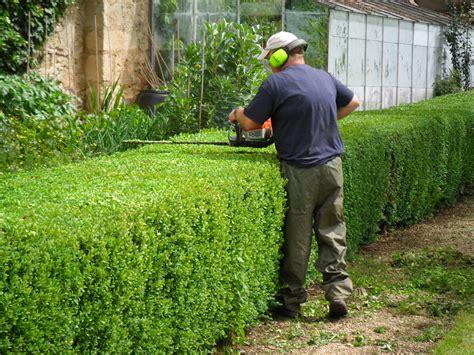 attraente Cespugli Sempreverdi Da Giardino #2: hedge-trimming.jpg