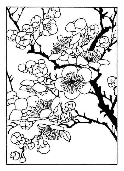 coloring pages japanese flowers sacred cake by jennifer valentine free friday oriental