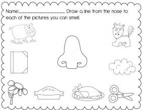 5 Senses Worksheets For Kindergarten Posted By Christine 5 Senses Coloring Pages Printable