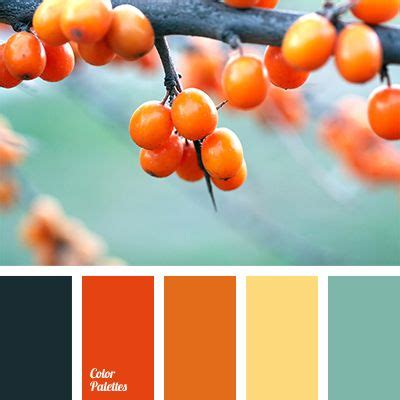 color combination for orange 91 best color palette images on pinterest color