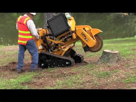 stump with a home depot rental grinder serial5 ru