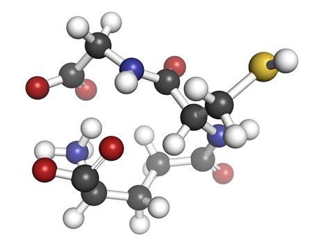 Gluta Glutathione l gluta power glutathione capsule agelesshub