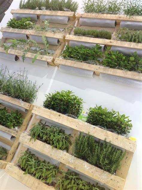vasi per orto sul balcone 17 migliori idee su giardino verticale di erbe aromatiche