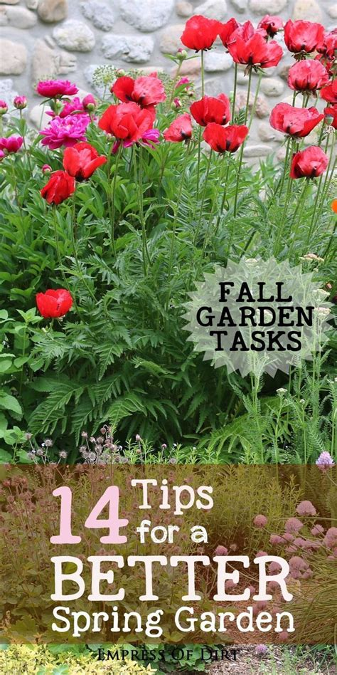 fall garden care 1000 images about creative gardening on