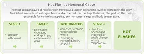 Symptoms Of Detoxing Heat Flashes by What Is A Flash Of