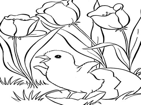 disney coloring pages spring spring coloring sheets easter pages holiday grig3 org