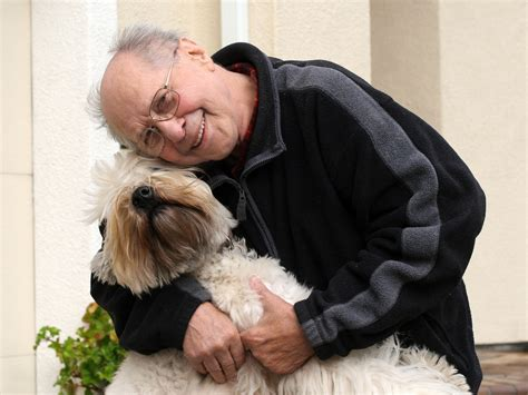 sundowners in dogs dogs and dementia how canine companions are helping seniors with sundowners