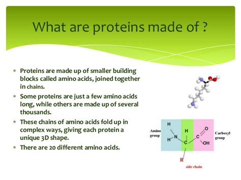 what is a made of architecture of proteins