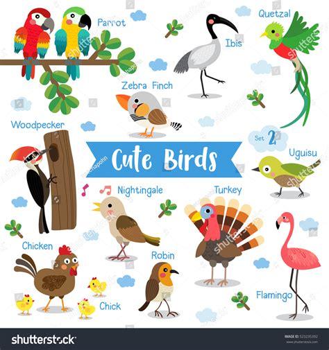 Lcute Set 3in1 Pigeons best bird names adultcartoon co