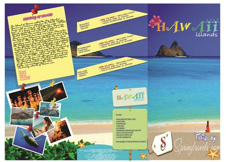 hawaii brochure template nidhitaneja50 a topnotch site
