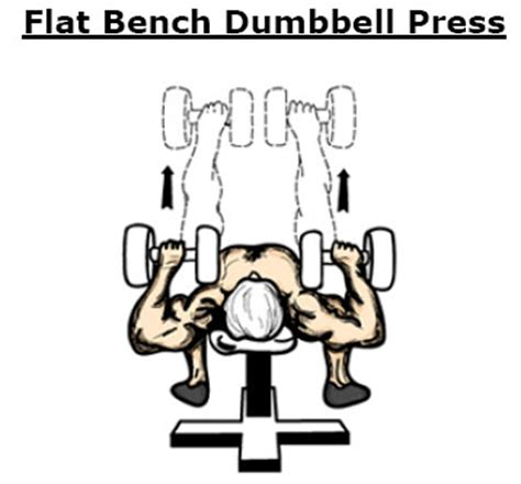 25kg dumbbell bench press tập thể h 236 nh cho một cơ thể khỏe mạnh bất kể tuổi t 225 c
