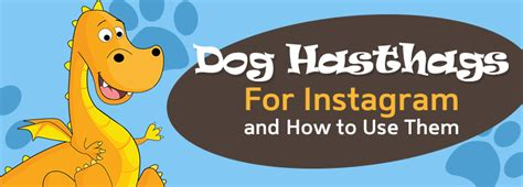 hashtags for dogs instagram archives socialdraft