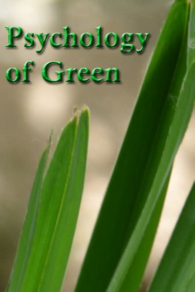 color psychology green color green color psychology personality meaning