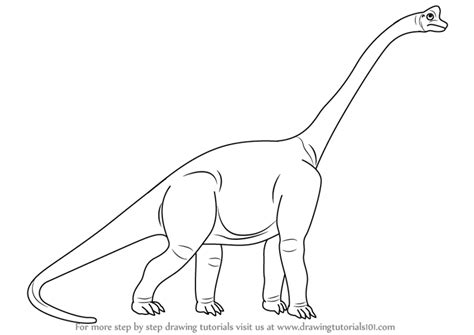 Drawing Dinosaurs by Learn How To Draw A Sauropod Dinosaurs Step By Step