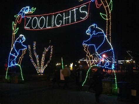 Focus Fox Log National Zoo Lights Date Night Zoo Light