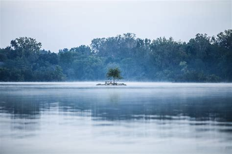 solitude fog lake  photo  pixabay