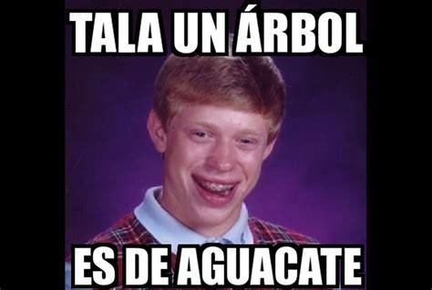 imagenes de memes de zayn los mejores memes del aguacate los mejores memes del caos