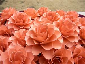 coral colored flowers paper flowers light coral or salmon color flowers for
