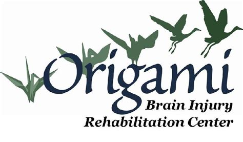 Origami Rehab - 4th annual brain injury symposium of mid michigan