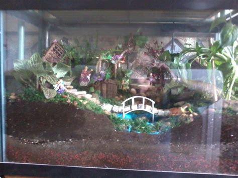 fish tank fairy garden fairy garden ideas