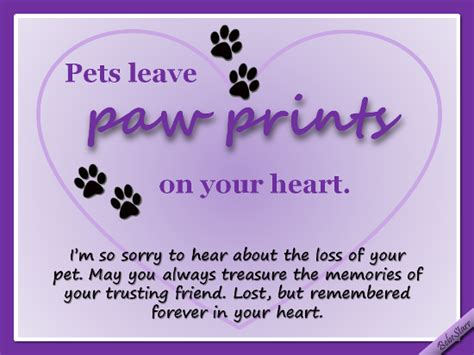 comforting words for loss of a pet pets leave paw prints on your heart free sympathy