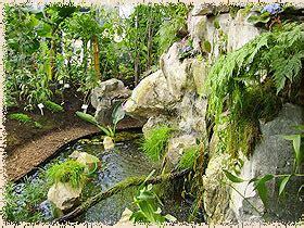 garten rostock botanischer garten rostock ostsee de