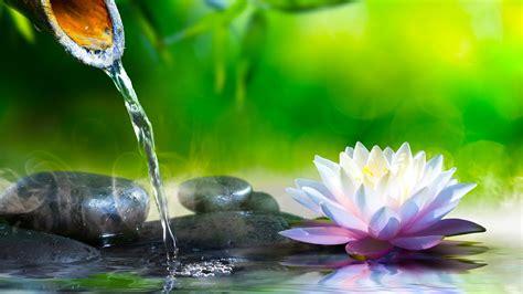 musica relajante zen musica de relajacion  meditacion