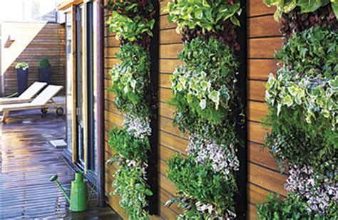 Vertical Garden Panel Smith Hawken S Vertical Garden Planting Panel The