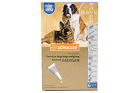 Advocate Xl For Dogs 25 40 Kg 1 Obat Kutu Anjing advocate xl 40 25 40kg 6 pipettes products