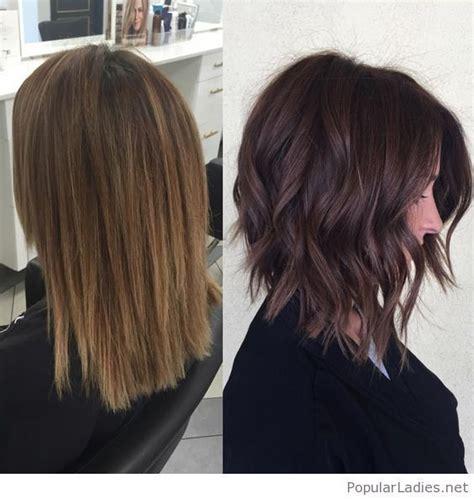 rich brown bob hair styles amazing dark rich brown chopped hair dark brown and