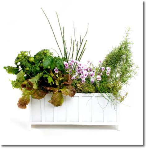 gardening tips indooroutdoor hanging plantsbaskets