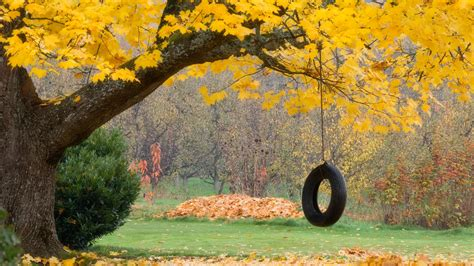 tire swing lyrics old tire swing poem by eve roper