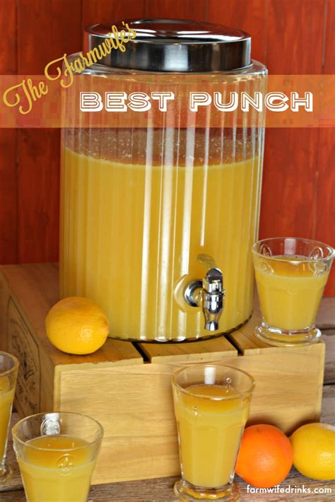best punch the best punch recipe the farmwife drinks