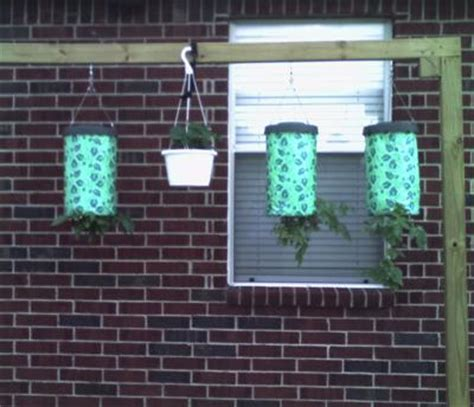 Hanging Tomato and Pepper Garden