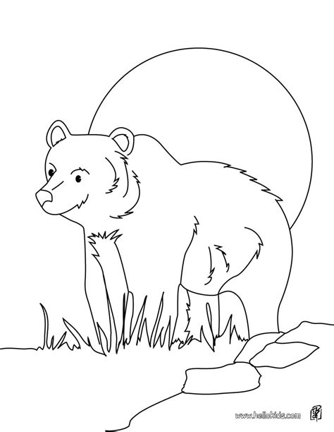 grizzly bear coloring pages hellokids com