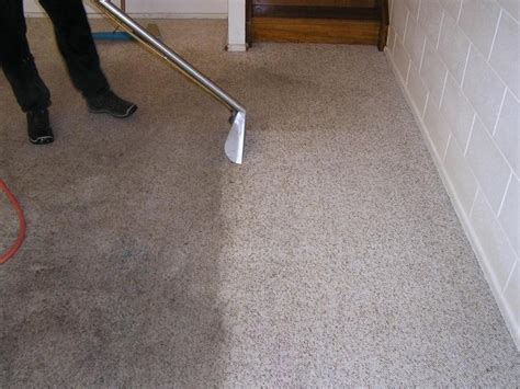 steam cleaner for carpets and upholstery 190 degree steam cleaning oakville mississauga