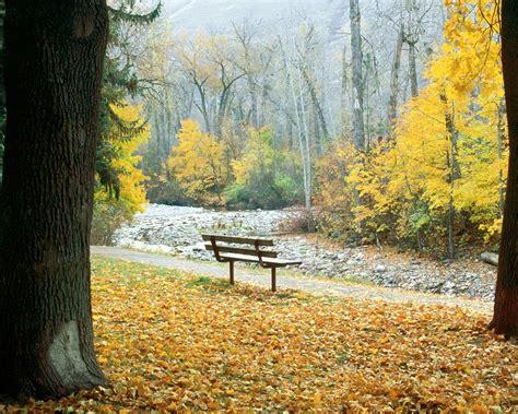imagenes de otoño invierno paisajes del oto 241 o